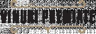 Expert Online Logo
