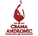 Crama Andronic